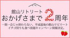 館山でいちご狩りを満喫キャンペーン開催中