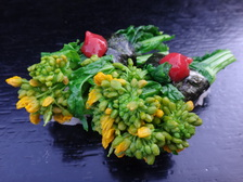 菜の花のお寿司!